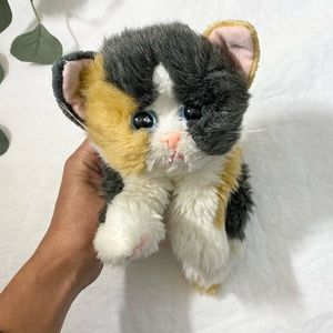 RARE* Collectors Kitty Kitty Kittens in Calico